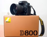 Nikon D800 36.3MP Digital SLR Camera