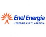 Consulenti Enel Energia